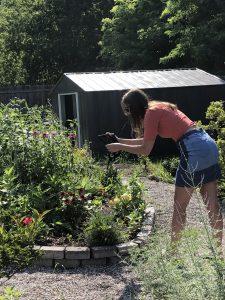 Ellie snaps photos in the butterfly garden